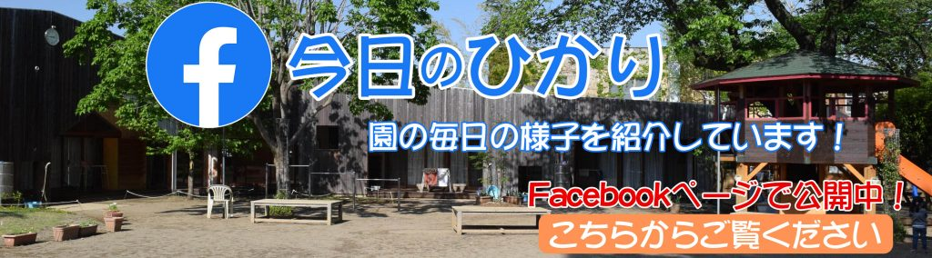 今日のひかり(Facebook)